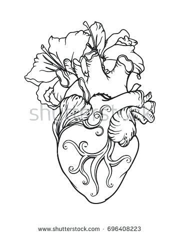 360x470 Anatomical Heart Outline A Geometric Heart Tattoo Idea Anatomical