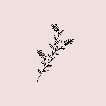 350x350 Collection Of Simple Flower Drawing Tumblr High Quality