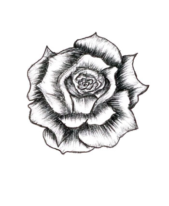 350x425 Drawn Rose Skull Inside Free Collection Download And Share Drawn