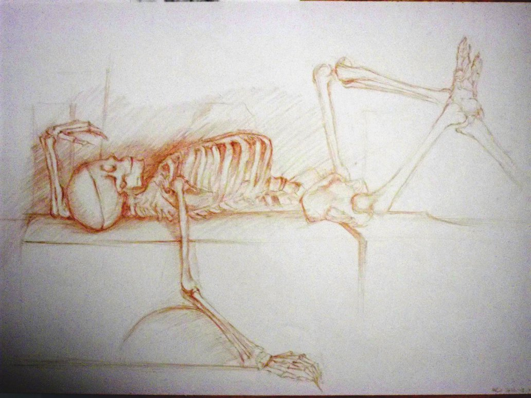 1032x774 Collection Of Skeleton Lying Down Drawing High Quality, Free