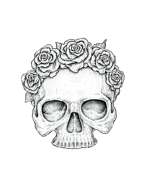 600x745 Skull And Rose Drawing Skull Floral Drawing