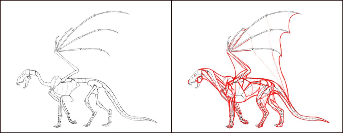 1200x468 How To Draw Dragons Step By Step With Monika Zagrobelna