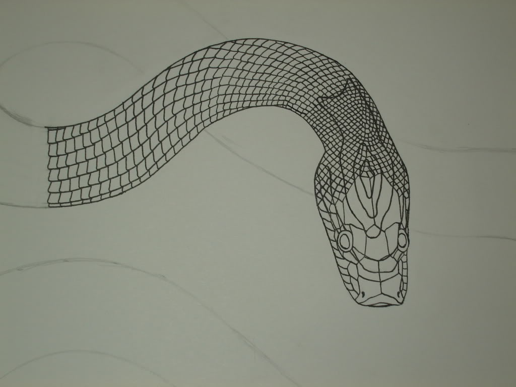 1024x768 Collection Of Snake Head Drawing Top View High Quality, Free