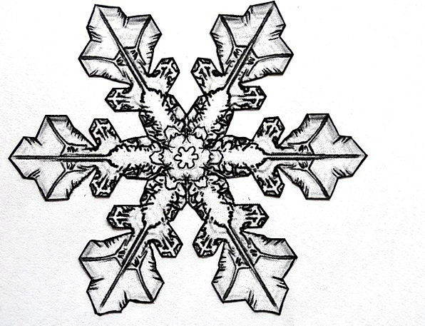 596x457 Collection Of Snowflake Pencil Drawing High Quality, Free
