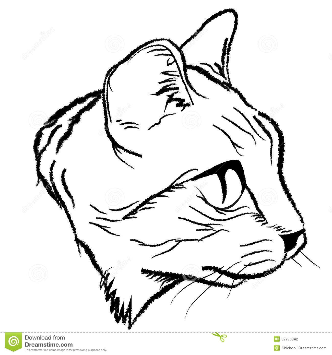 1300x1390 Drawing A Cat Face Simple Cat Face Drawing How To Draw A Cat Face