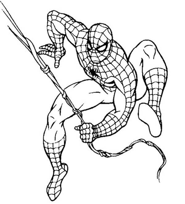 600x659 Spiderman In Action Coloring Page Spiderman In Action Coloring