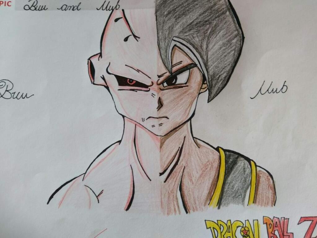 1024x768 Split Drawing Of Buu And Uub! Dragonballz Amino