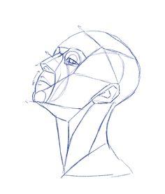 236x278 Anatomical Drawing Of Torso Torso Surface Anatomy Drawings How