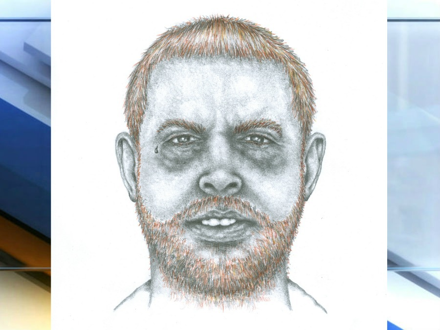 900x675 Police Release Sketch Of Suspect In Road Rage Murder