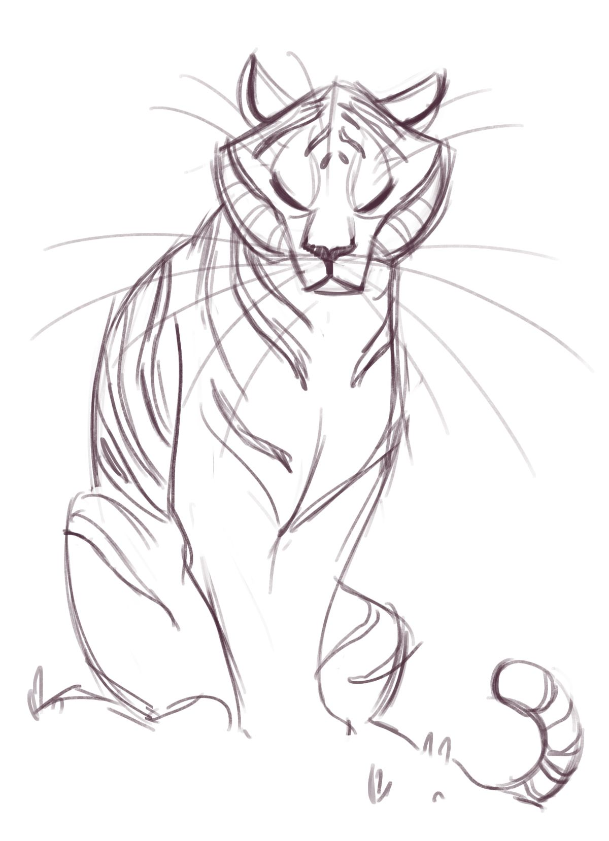 Tiger Drawing Easy