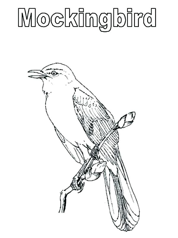 To Kill A Mockingbird Drawing at GetDrawings.com | Free for personal ...