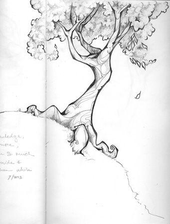 Tota Drawing