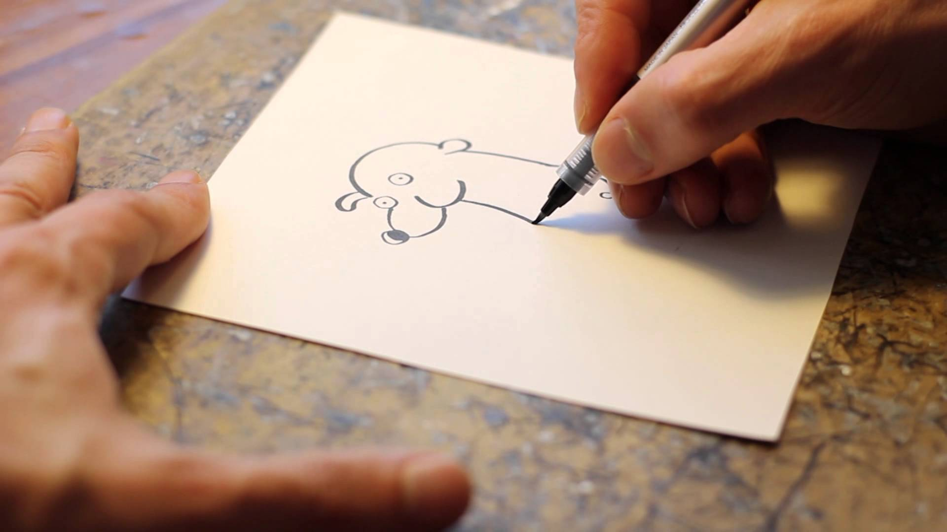 1920x1080 How To Draw Total The Polar Bear By Stephan Pastis (Timmy Failure