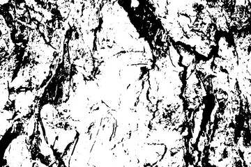 360x240 Grungy Tree Bark Vector Texture. Black And White Bark Ornament
