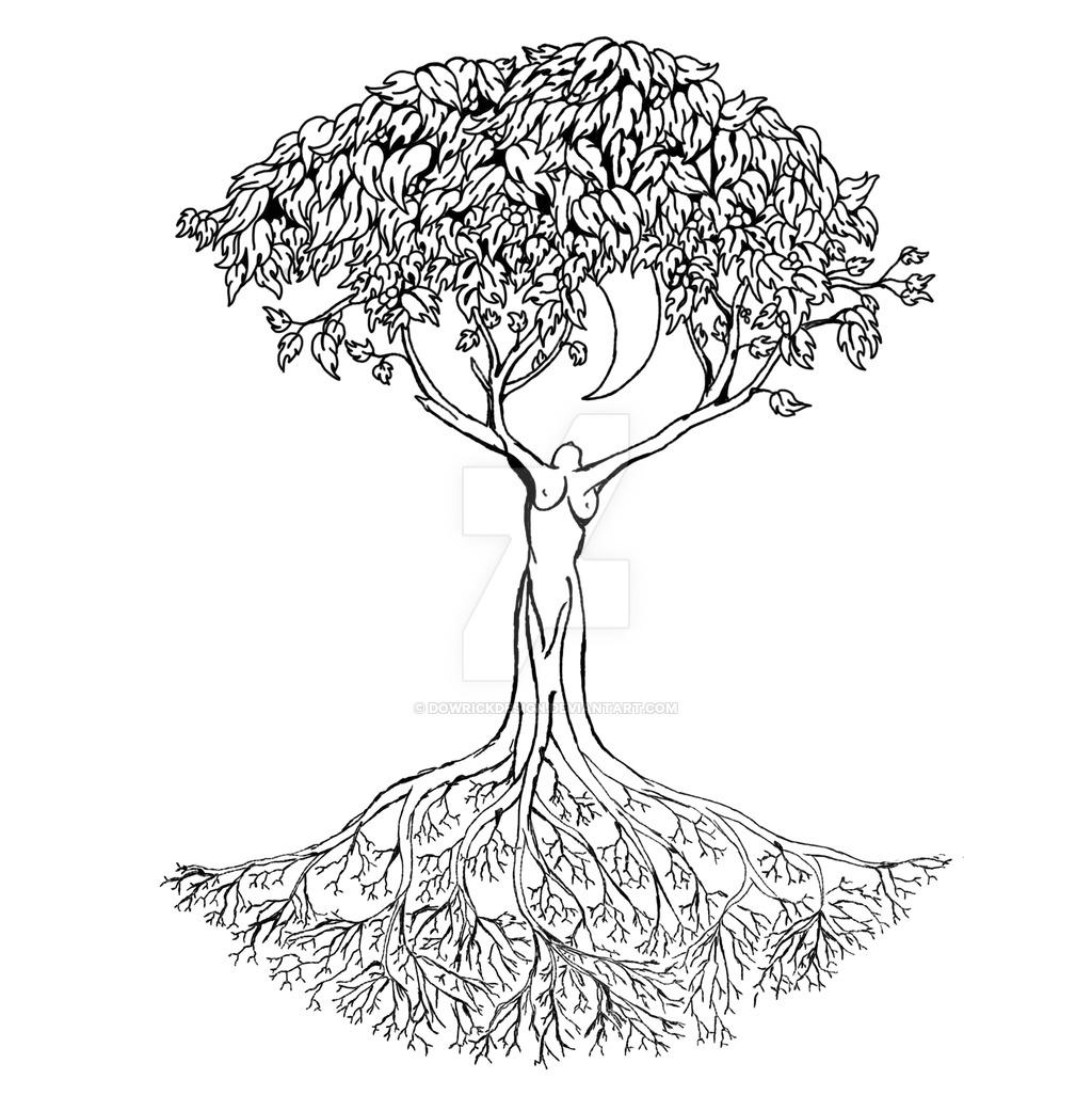 1024x1026 Celtic Tree Of Life Drawing Celtic Tree Of Life Drawing Celtic