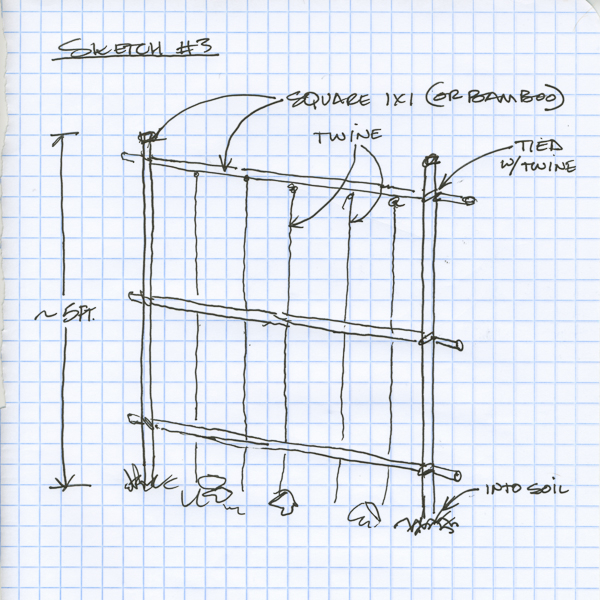 The best free Trellis drawing images