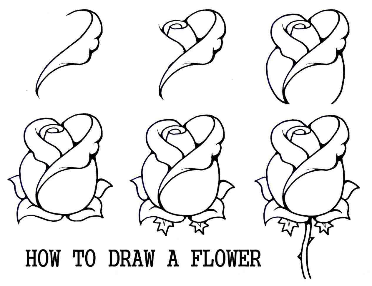 1264x973 Collection Of Tumblr Drawing Easy Step By Step High Quality