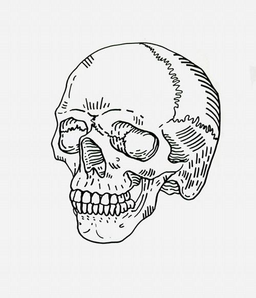 Tumblr Skull Drawing