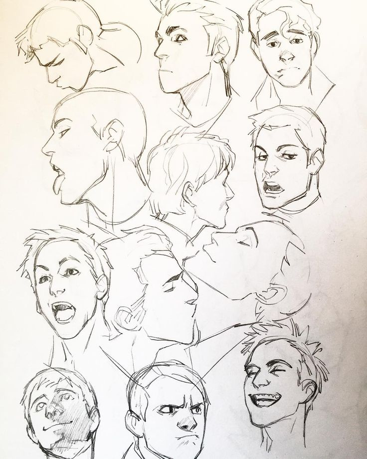 Types Of Noses Drawing