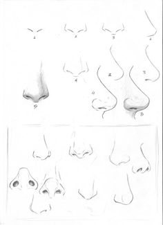 236x325 Drawing Different Types Of Nose Nose Mouth Drawing
