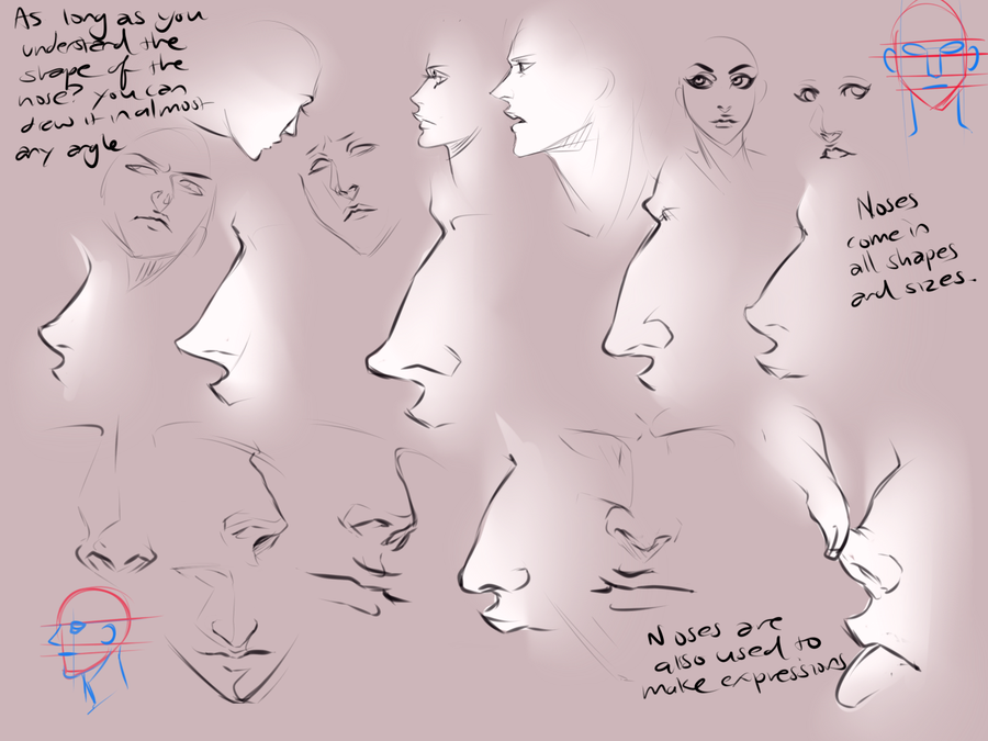 types of noses drawing at getdrawings com free for personal use