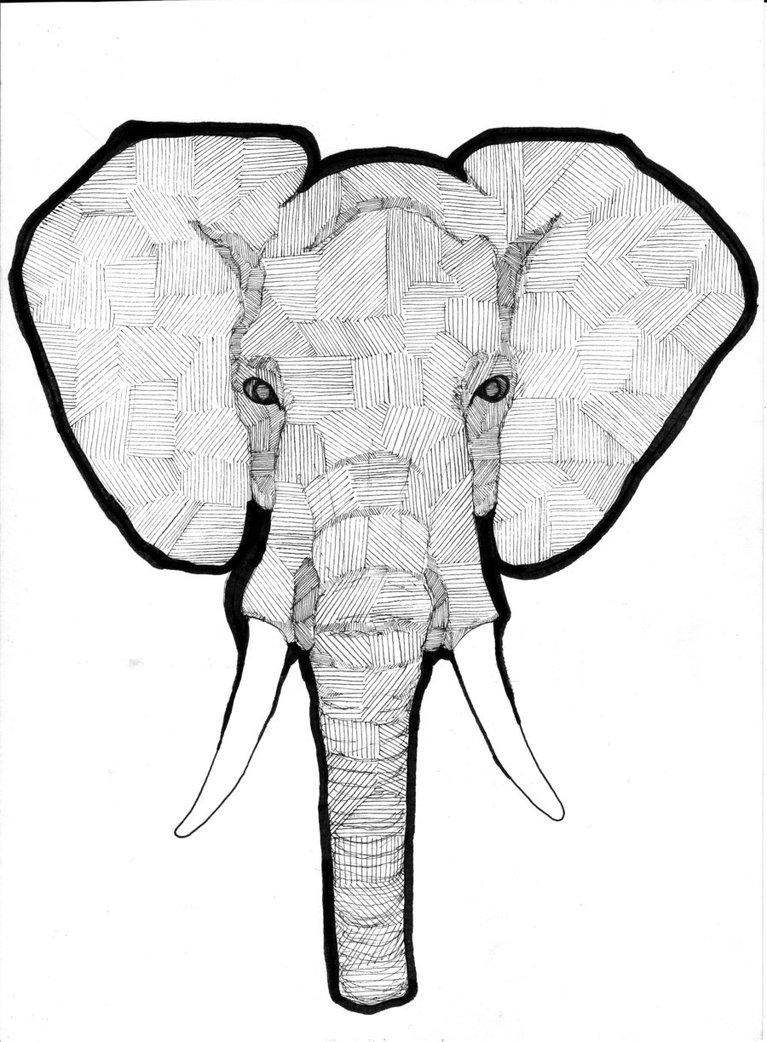 767x1042 Elephant Clipart Tumblr