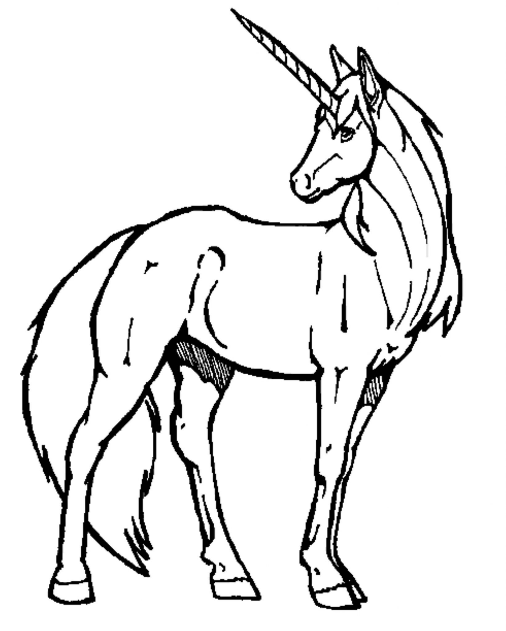 Unicorn Head Drawing Easy at GetDrawings   Free download