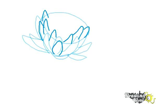 600x400 Water Lily Drawings Graphite Drawing Waterlily By Butt Water Lily