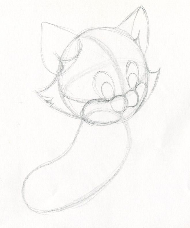 Whisker Drawing