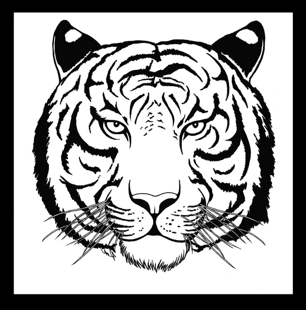 White Tiger Face Drawing at GetDrawings | Free download