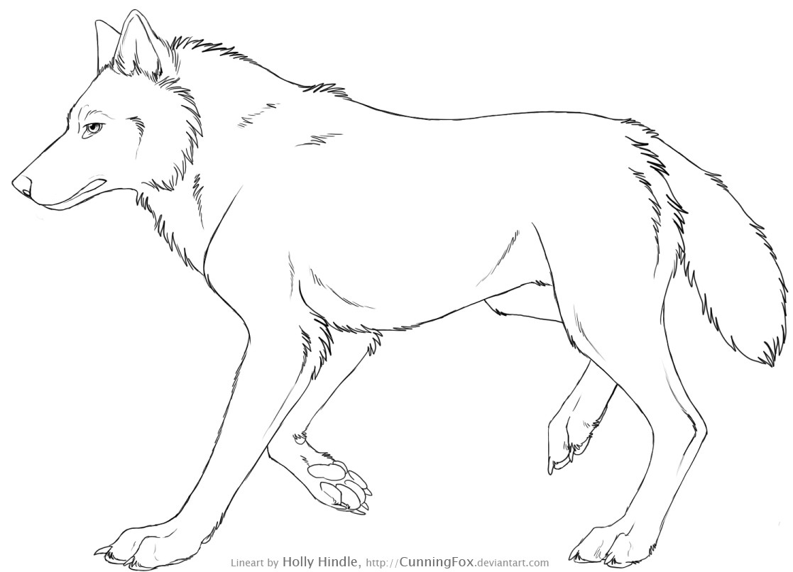 1117x806 Collection Of Side View Wolf Drawing High Quality, Free