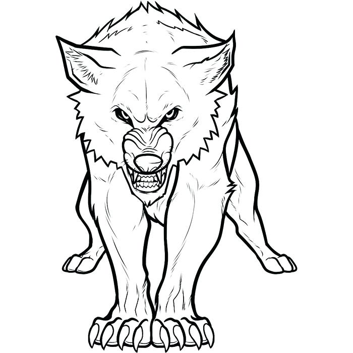 700x700 Wolf Head Outline Wolf Head Outline Wolf Face Outline Drawing