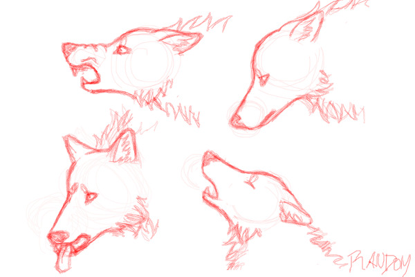 600x400 Collection Of Wolf Head Side Drawing High Quality, Free