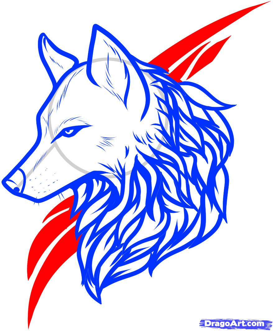878x1065 Collection Of Wolf Head Side Profile Drawing High Quality