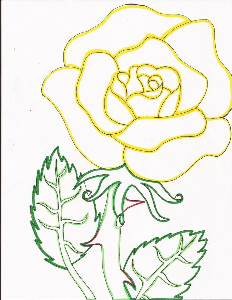 786x1017 Yellow Rose Line Art By Day Week