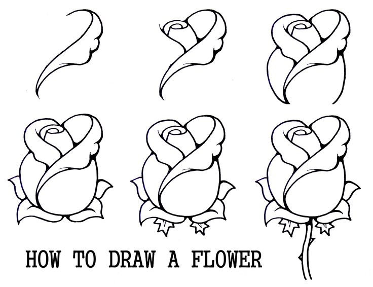736x566 How To Draw A Rosebud Artwork, Rose And Drawings