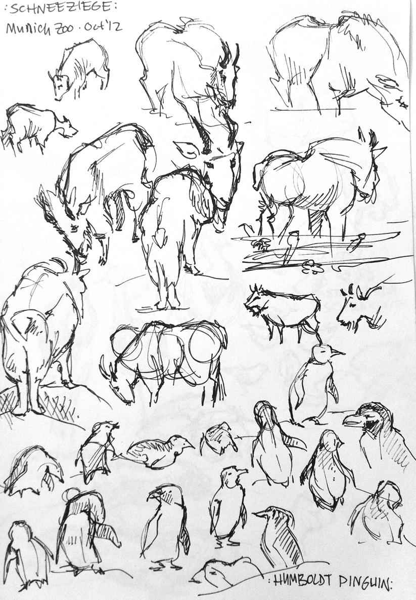 823x1185 Drawings Zoo Animals Emily Bee