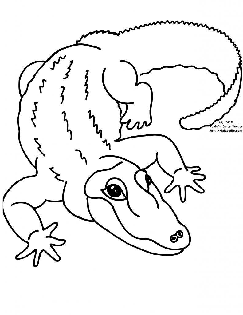 791x1024 Professional Zoo Animal Drawings Drawing At Getdrawings Com Free