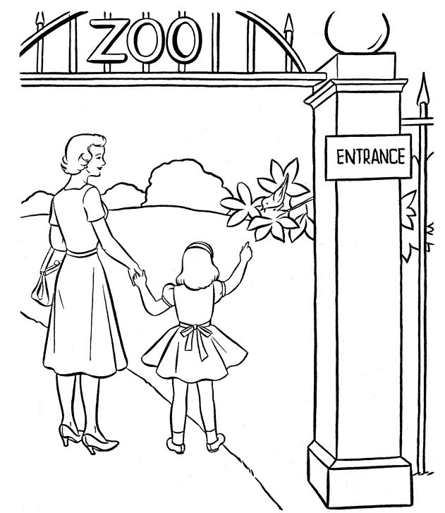 631x727 60 Best Zoo Images On Kids Net, Coloring And Printable