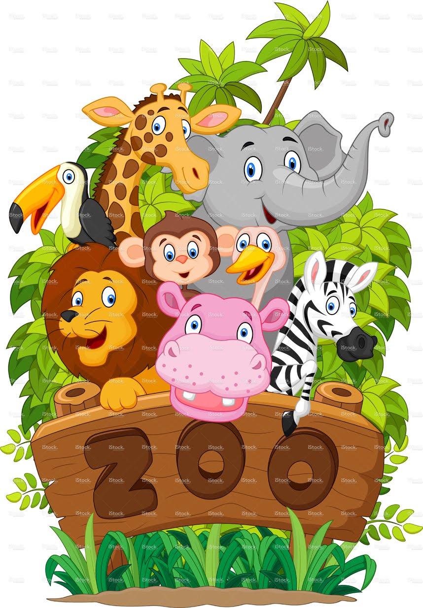 858x1235 Lets Guess Zoo Animals Preschool Kids Whiteboard Drawing Learn
