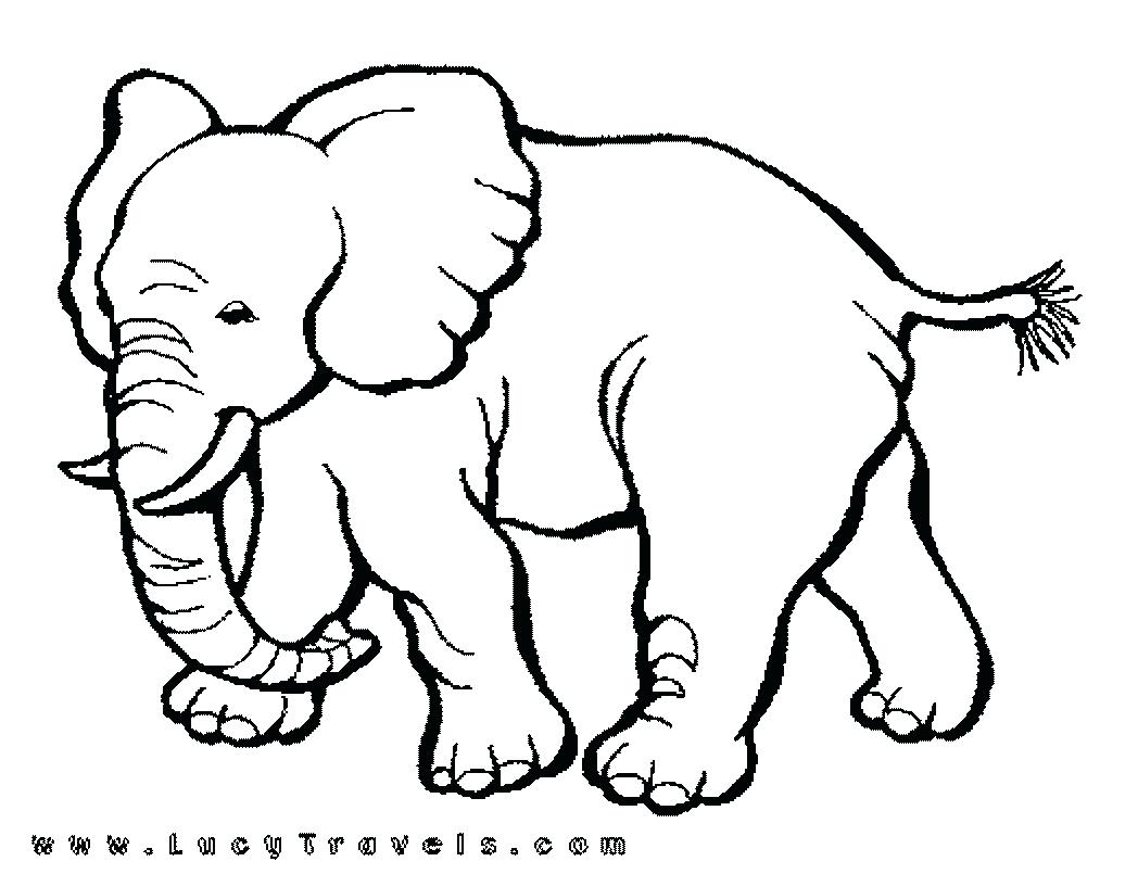 1048x805 Cartoon Zoo Animal Drawings Cartoon Pictures Zoo Animals Family