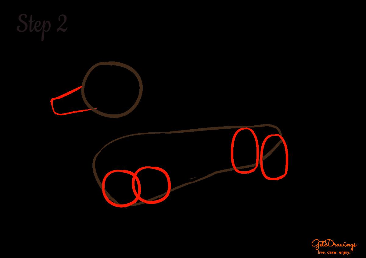 How to draw a Dachshund dog?