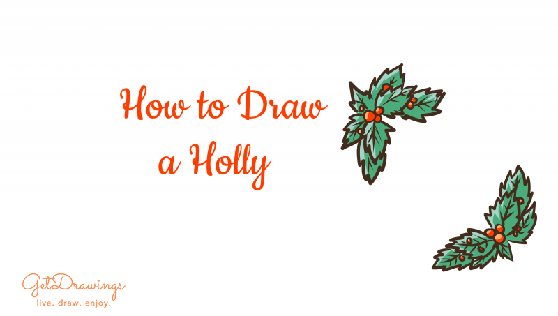 How to Draw a Holly