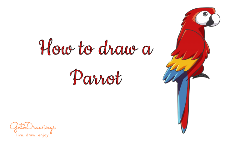 How to draw a Parrot?