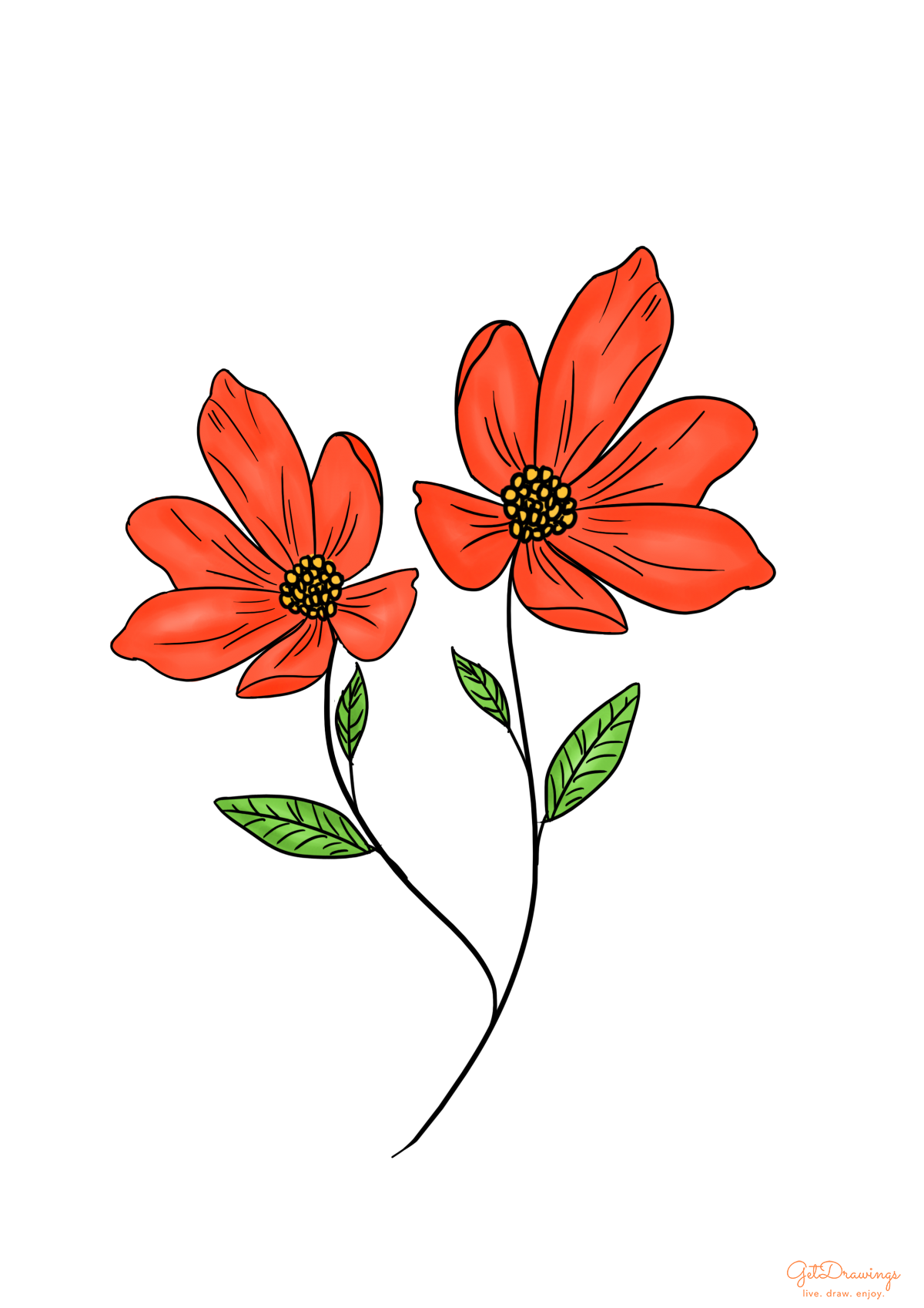 How to draw a red Flower?