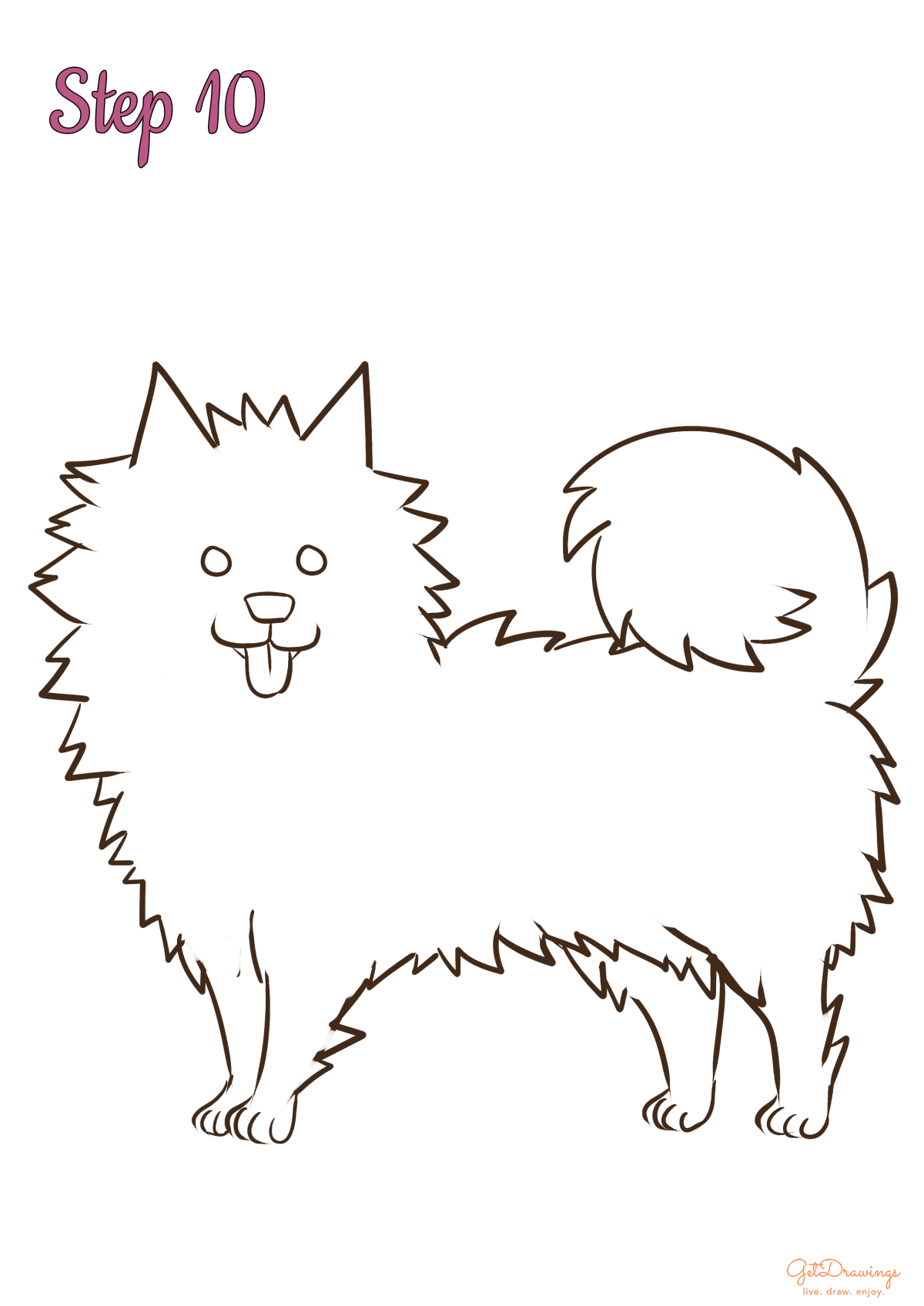 How to draw a Samoyed Dog?