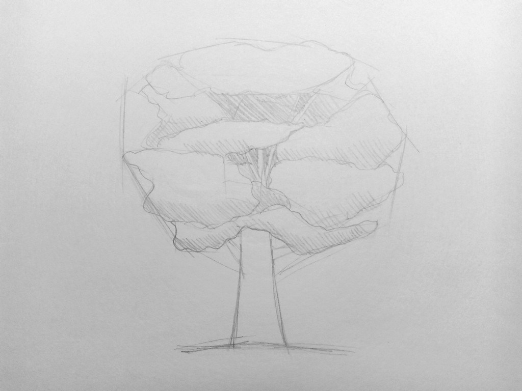How to draw a Tree?