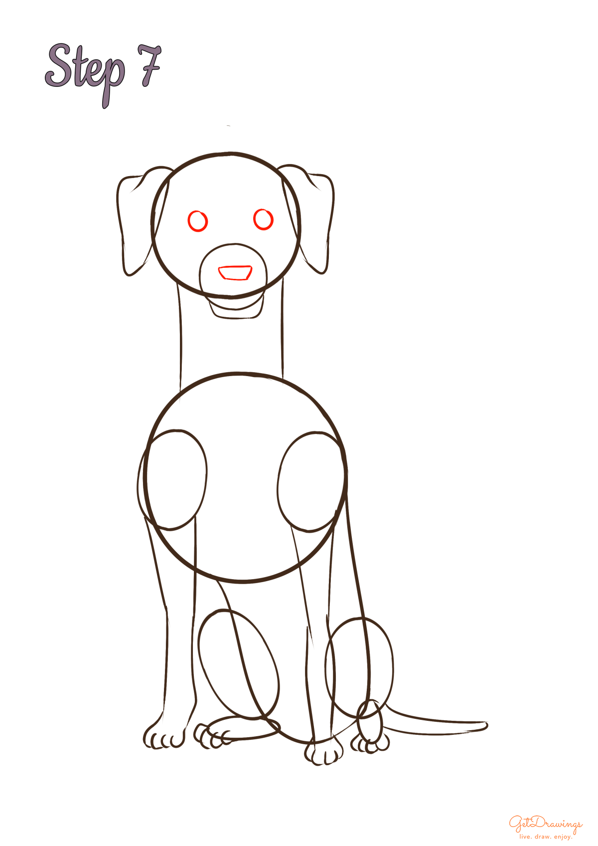 How to draw a Weimaraner dog?