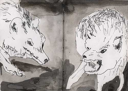 Animal Drawing Wolf Ink On Paper Raphael Perez Artist