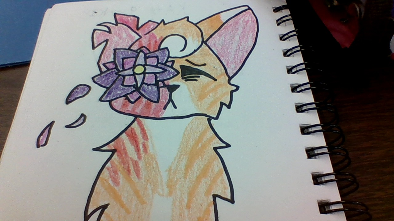 Brightheart -warriors-